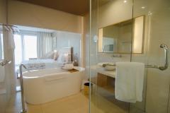 Deluxe Room - Bath Room